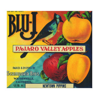 Blu-J Apple Crate LabelWatsonville, CA Gallery Wrapped Canvas