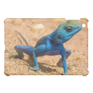 Blue Agama Sinaita Lizard iPad Mini Cover