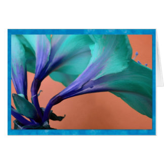 Blue amaryllis card