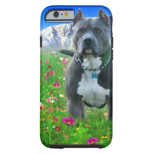 Blue American Pit Bull Terrier, Pikes Peak iPhone 6 Case