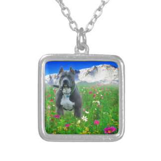 Blue American Pit Bull Terrier, Pikes Peak Silver Plated Necklace