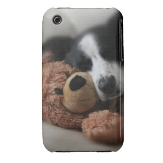 Blue and Bear iPhone 3 Covers