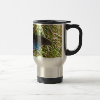 blue and black butterfly mug