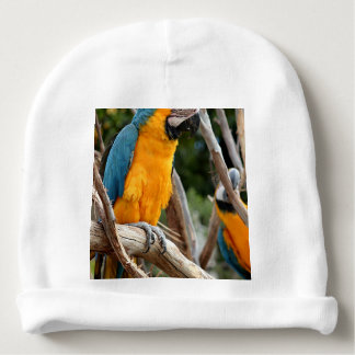 Blue And Gold Macaw Baby Beanie