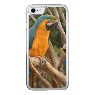 Blue And Gold Macaw Carved iPhone 8/7 Case