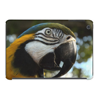 Blue and Gold Macaw Case iPad Mini Cover