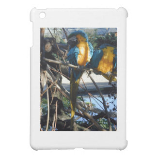 blue and gold macaw cover for the iPad mini