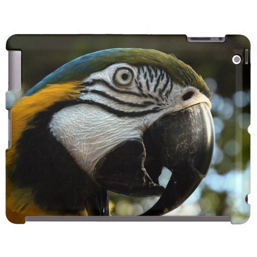 Blue and Gold Macaw iPad Case