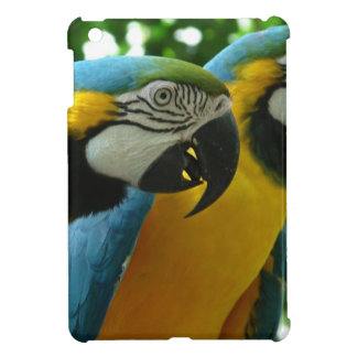 Blue and Gold Macaw Case For The iPad Mini