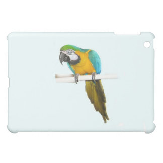 Blue and gold macaw iPad mini cases