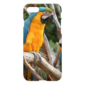 Blue And Gold Macaw iPhone 7 Case