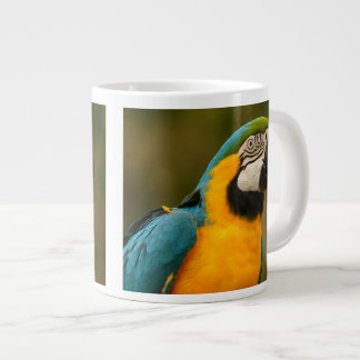 blue and gold macaw large coffee mug
