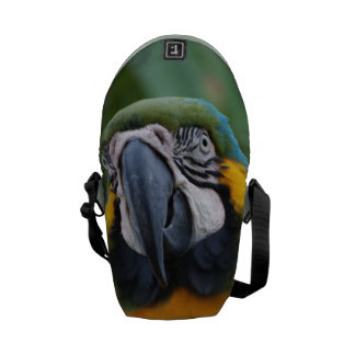 Blue and Gold Macaw Messenger Bags
