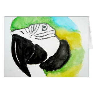Blue and Gold Macaw Notecards Greeting Card