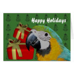 Blue And Gold Macaw Parrot Christmas Holiday Greeting Card