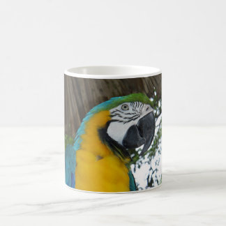 blue and gold macaw parrot coffee mug