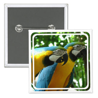 Blue and Gold Macaw Pin
