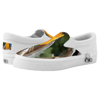 Blue And Gold Macaw Printed Shoes