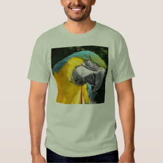 Blue and Gold Macaw Tshirt