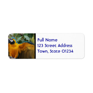 Blue and Gold Macaw with Wings Spread Return Address Label
