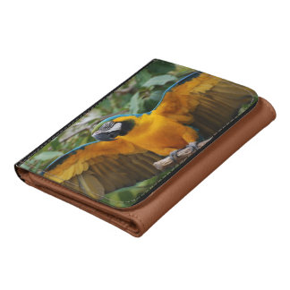 Blue and Gold Macaw with Wings Spread Wallet
