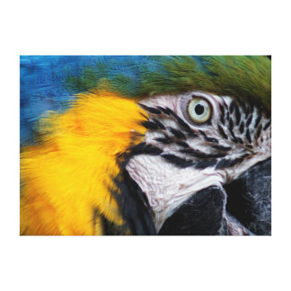 Blue and Gold Macaw Wrapped Canvas 28x20