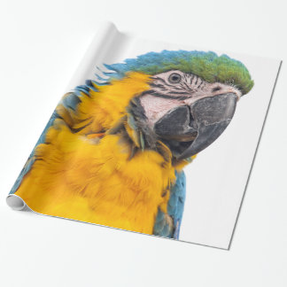 Blue and Gold Macaw Wrapping Paper