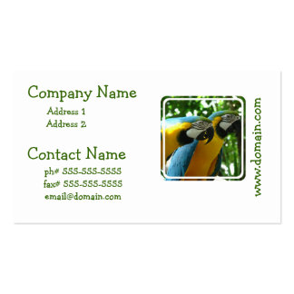 Blue and Gold Macaws Business Card