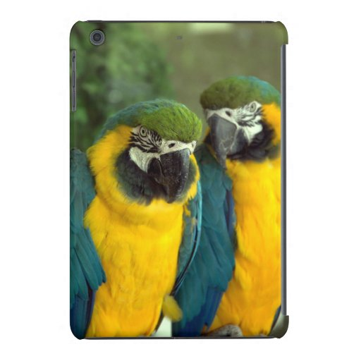 Blue and Gold Macaws Case iPad Mini Retina Cases