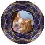 Blue and Gold Swirled Round Fractal Art Frame