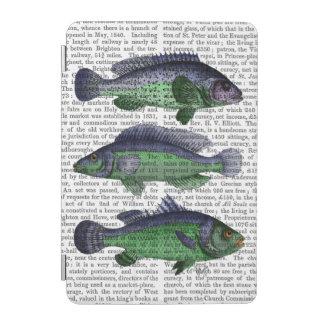 Blue and Green Fish Trio iPad Mini Cover