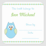 Blue and Green Owl Baby Boy Book Plate bookplates Square Sticker