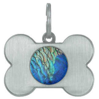 Blue And Green Peacock Feathers Pet ID Tag