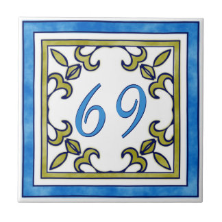 Blue and Olive Green Big House Number Small Square Tile