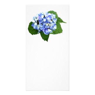 Blue and Purple Hydrangea Customized Photo Card
