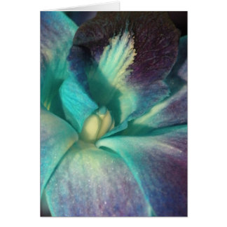 Blue and purple orchid close up greeting card