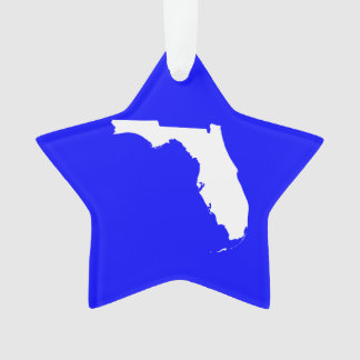 Blue and White Florida Ornament