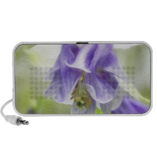 Blue And White Frilly Columbine iPod Speakers