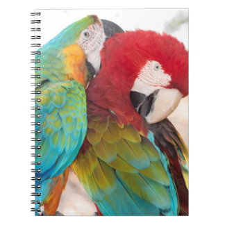 Blue-and-Yellow Macaw and Scarlett Macaw Notebook