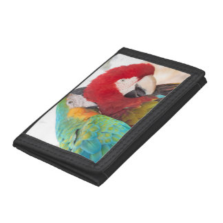 Blue-and-Yellow Macaw and Scarlett Macaw Trifold Wallets