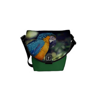 Blue and yellow macaw messenger bags