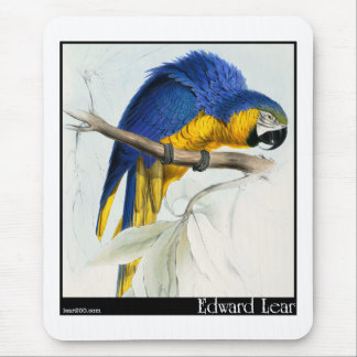 Blue and Yellow Macaw Mouse Pad