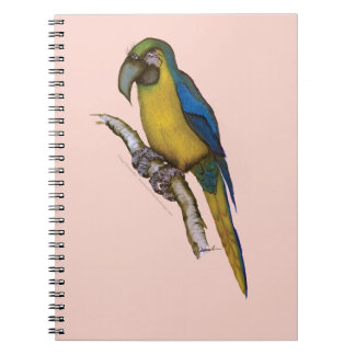 blue-and-yellow macaw, tony fernandes.tif spiral notebooks