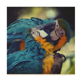 Blue and yellow macaws wood wall decor