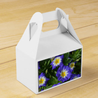 Blue and Yellow Morning Glories Favour Box