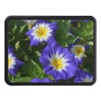 Blue and Yellow Morning Glories Hitch Cover