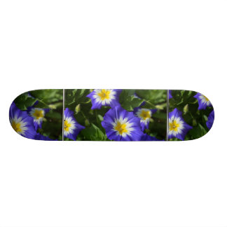 Blue and Yellow Morning Glories 18.1 Cm Old School Skateboard Deck