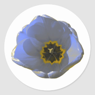 Blue and Yellow Tulip Round Stickers