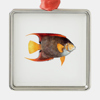 Blue Angelfish (saltwater) Silver-Colored Square Decoration