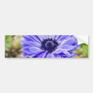 Blue Aster Flower Bumper Sticker Car Bumper Sticker